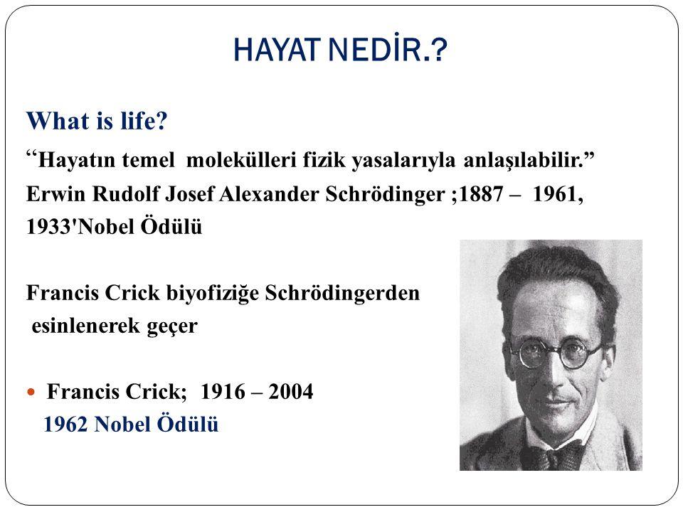 """HAYAT NEDİR.? What is life? """" Hayatın temel molekülleri fizik yasalarıyla anlaşılabilir."""" Erwin Rudolf Josef Alexander Schrödinger ;1887 – 1961, 1933'"""