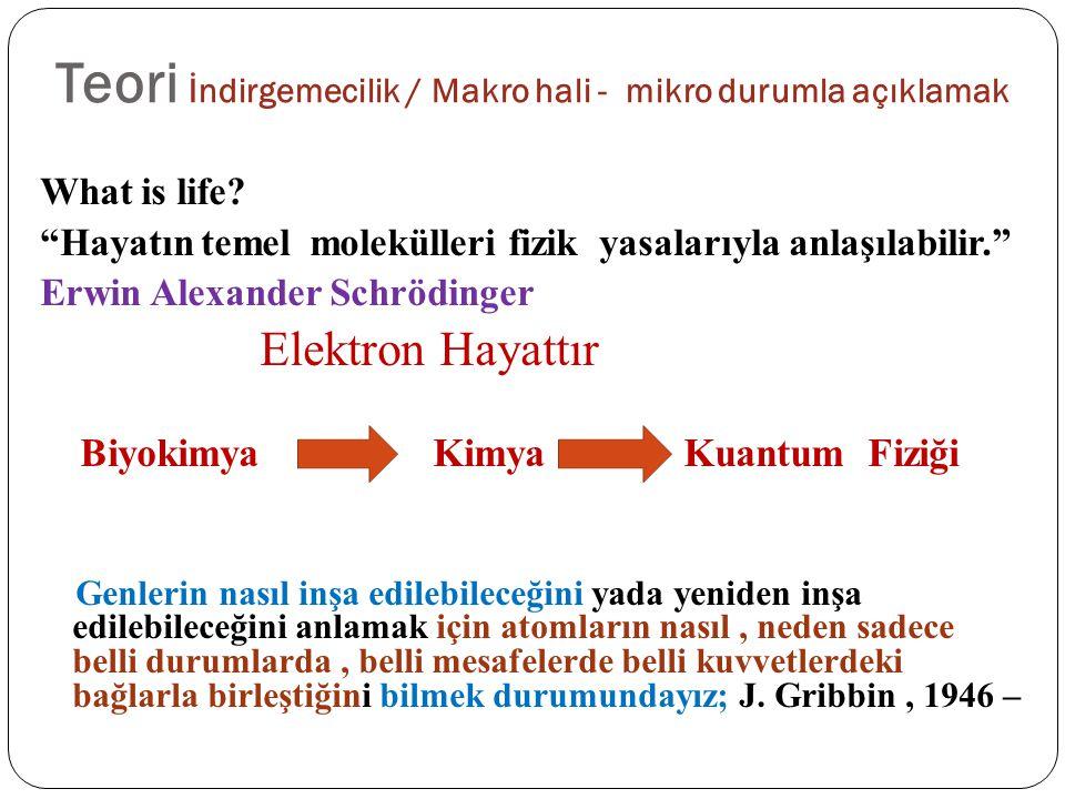 """Teori İndirgemecilik / Makro hali - mikro durumla açıklamak What is life? """"Hayatın temel molekülleri fizik yasalarıyla anlaşılabilir."""" Erwin Alexander"""