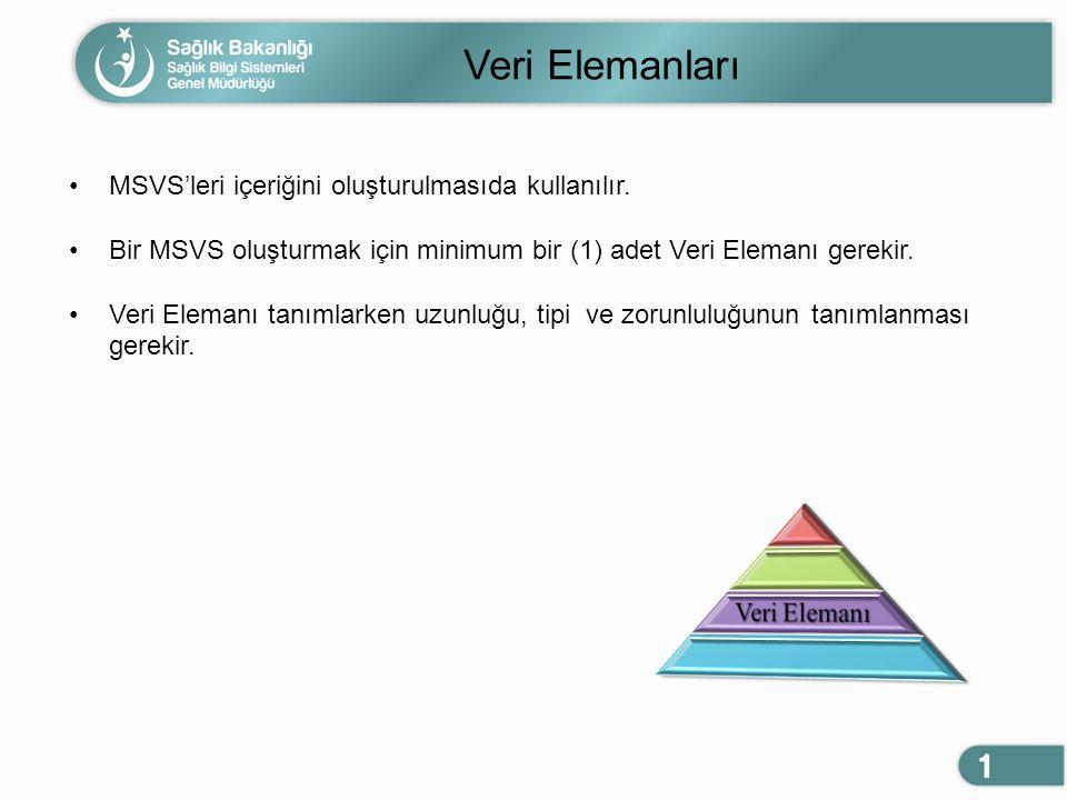 Veri Elemanları MSVS'leri içeriğini oluşturulmasıda kullanılır. Bir MSVS oluşturmak için minimum bir (1) adet Veri Elemanı gerekir. Veri Elemanı tanım