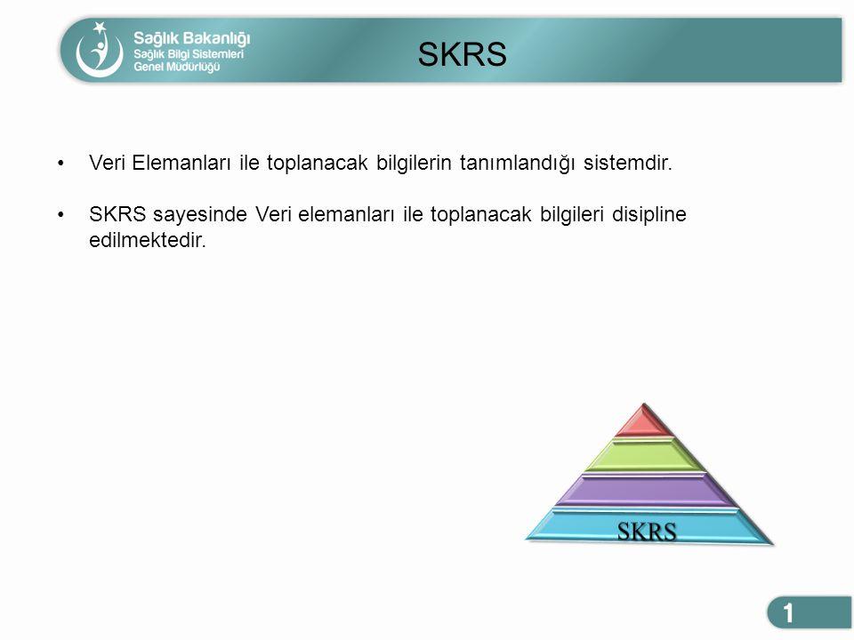 SKRS Veri Elemanları ile toplanacak bilgilerin tanımlandığı sistemdir. SKRS sayesinde Veri elemanları ile toplanacak bilgileri disipline edilmektedir.