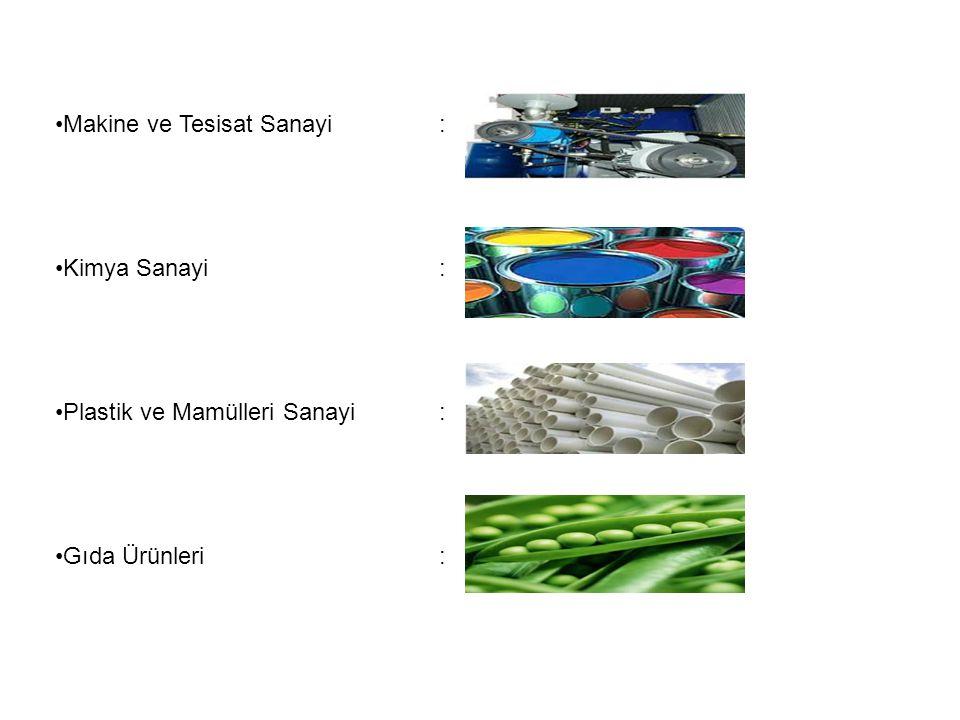 Makine ve Tesisat Sanayi: Kimya Sanayi: Plastik ve Mamülleri Sanayi: Gıda Ürünleri :