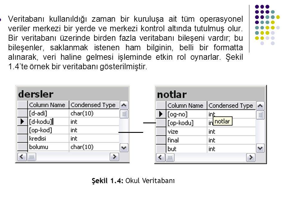 Veritabanı kullanıldığı zaman bir kuruluşa ait tüm operasyonel veriler merkezi bir yerde ve merkezi kontrol altında tutulmuş olur. Bir veritabanı üzer