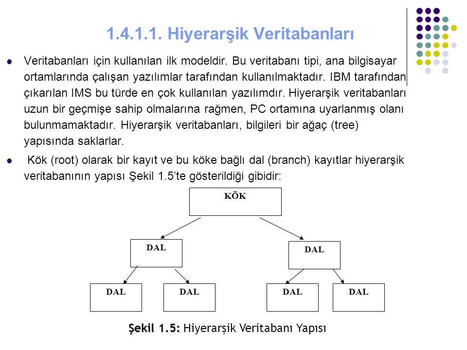 1.4.1.1. Hiyerarşik Veritabanları Veritabanları için kullanılan ilk modeldir. Bu veritabanı tipi, ana bilgisayar ortamlarında çalışan yazılımlar taraf