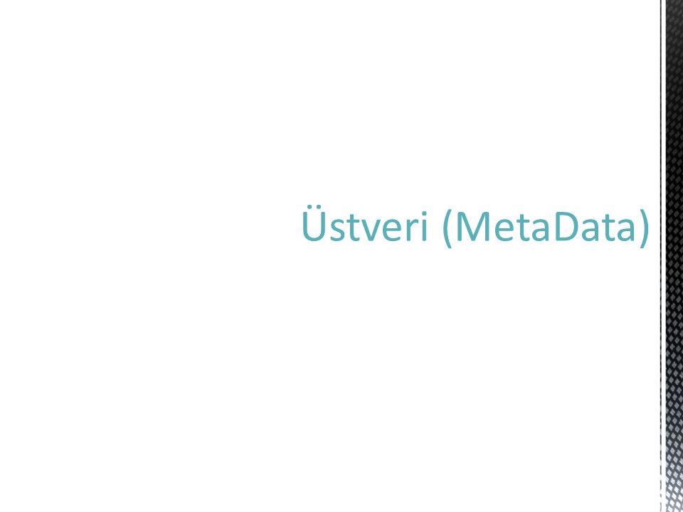 Üstveri (MetaData)