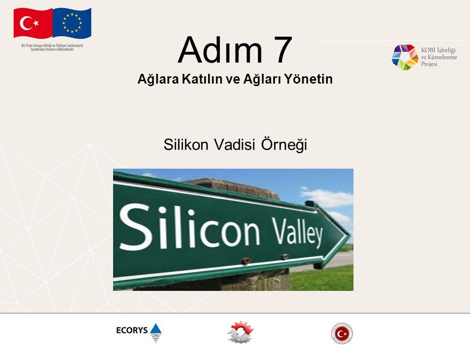 Adım 7 Ağlara Katılın ve Ağları Yönetin Silikon Vadisi Örneği