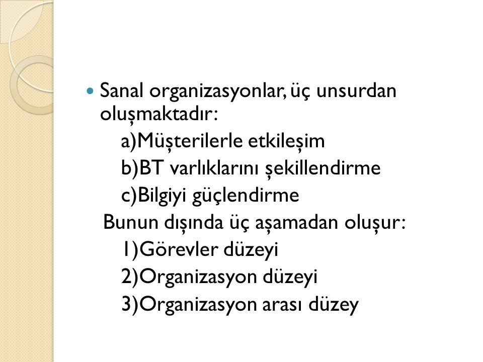 Sanal organizasyonlar, üç unsurdan oluşmaktadır: a)Müşterilerle etkileşim b)BT varlıklarını şekillendirme c)Bilgiyi güçlendirme Bunun dışında üç aşamadan oluşur: 1)Görevler düzeyi 2)Organizasyon düzeyi 3)Organizasyon arası düzey