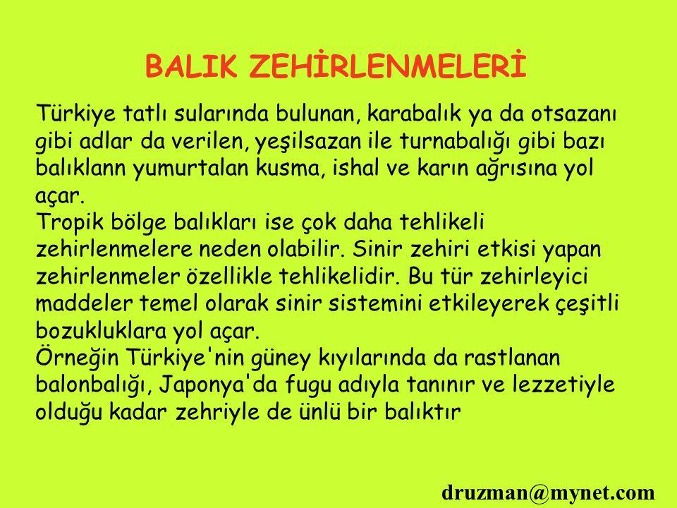 druzman@mynet.com BALIK ZEHİRLENMELERİ Türkiye tatlı sularında bulunan, karabalık ya da otsazanı gibi adlar da verilen, yeşilsazan ile turnabalığı gib