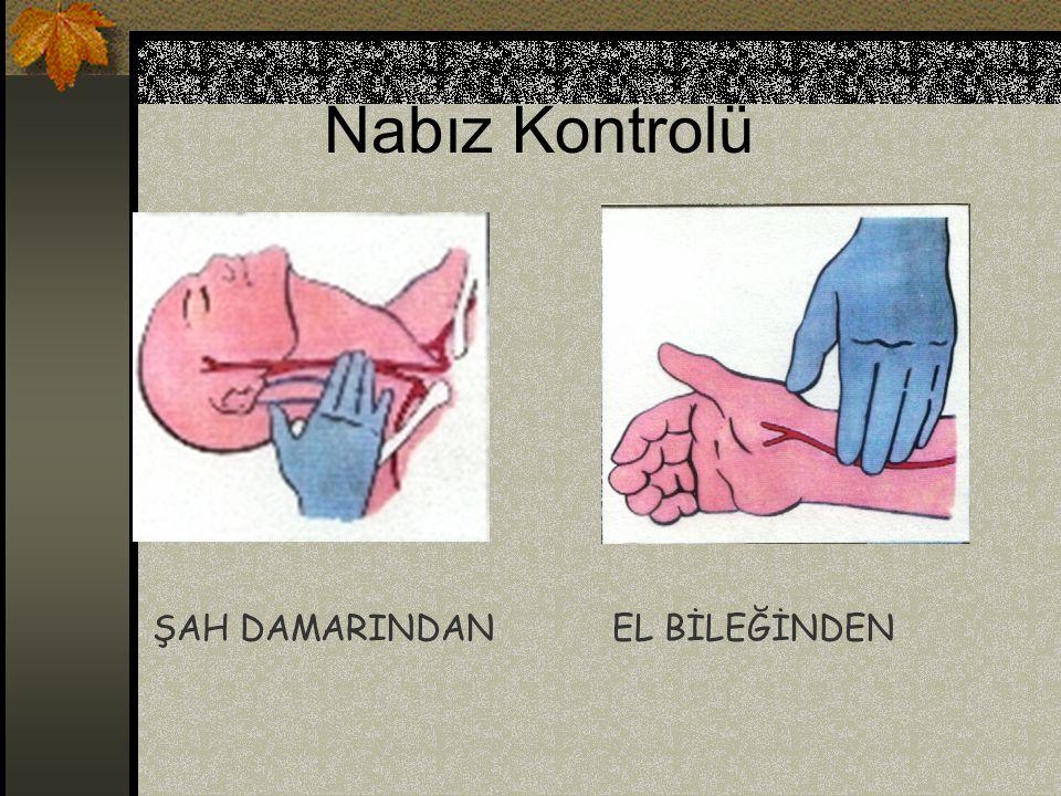 Nabız Kontrolü ŞAH DAMARINDANEL BİLEĞİNDEN