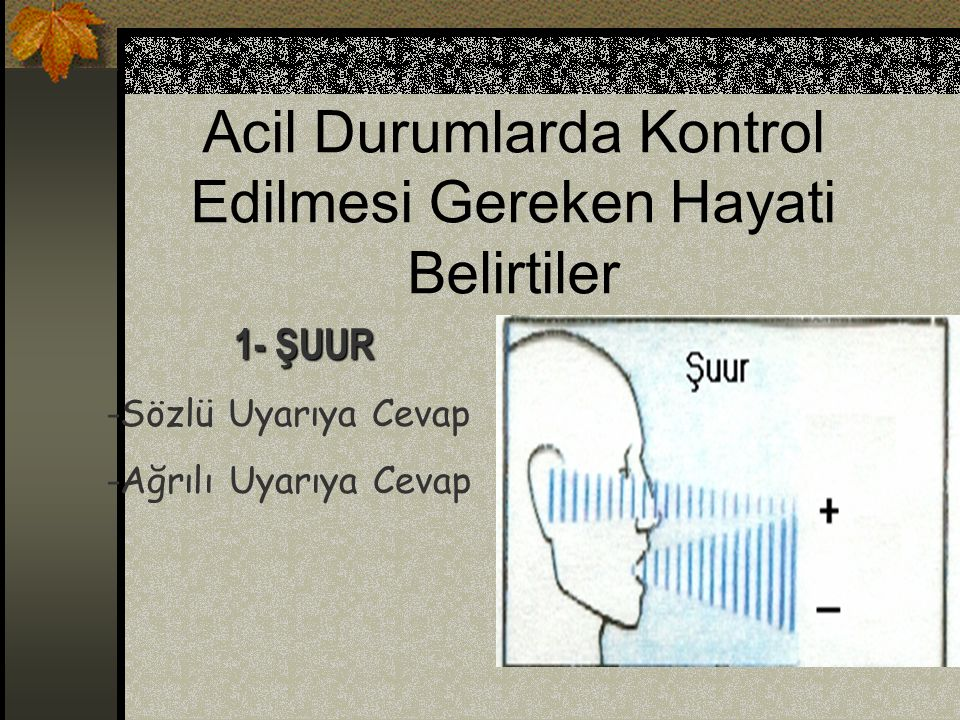 Acil Durumlarda Kontrol Edilmesi Gereken Hayati Belirtiler 2- SOLUNUM - Frekansı - Ritmi