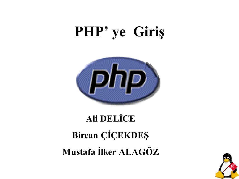 PHP ilk kez Rasmus Lerdorf tarafından 1994 güzünde kendi özel işlerini görmek amacıyla bir dizi Perl Script (betik) ile yazılmış bir cgi wrapper olarak yaşama başlamıştır.