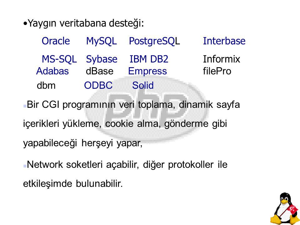 Yaygın veritabana desteği: Oracle MySQL PostgreSQLInterbase MS-SQL Sybase IBM DB2Informix Adabas dBase EmpressfilePro dbm ODBC Solid n Bir CGI program