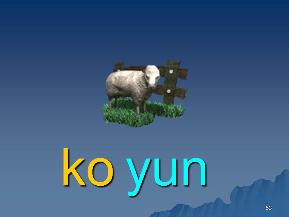 53 yunko