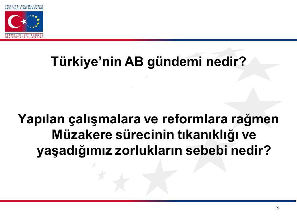 Türkiye'nin AB gündemi nedir? Yapılan çalışmalara ve reformlara rağmen Müzakere sürecinin tıkanıklığı ve yaşadığımız zorlukların sebebi nedir? 3