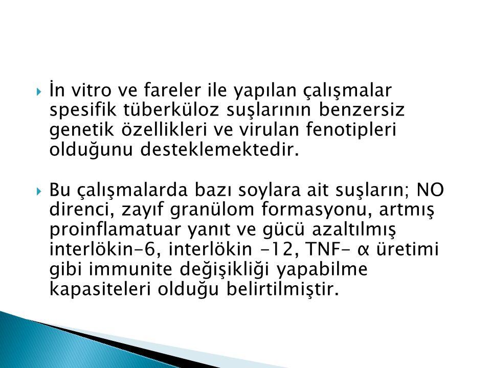  Türkiye'de M.tuberculosis izolatlarının genotiplemesine yönelik ilk çalışmayı, Durmaz ve ark.