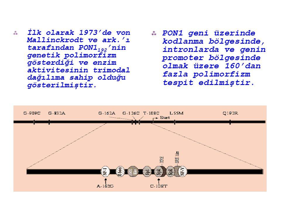  İlk olarak 1973'de von Mallinckrodt ve ark.'ı tarafından PON1 192 'nin genetik polimorfizm gösterdiği ve enzim aktivitesinin trimodal dağılıma sahip olduğu gösterilmiştir.