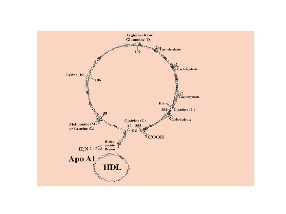 İnsektisitHerbisit Fungisit Rodentisit Pestisitler