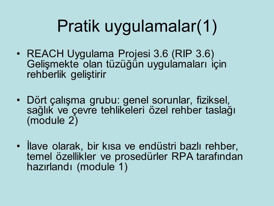 Pratik uygulamalar(1) REACH Uygulama Projesi 3.6 (RIP 3.6) Gelişmekte olan tüzüğün uygulamaları için rehberlik geliştirir Dört çalışma grubu: genel sorunlar, fiziksel, sağlık ve çevre tehlikeleri özel rehber taslağı (module 2) İlave olarak, bir kısa ve endüstri bazlı rehber, temel özellikler ve prosedürler RPA tarafından hazırlandı (module 1)