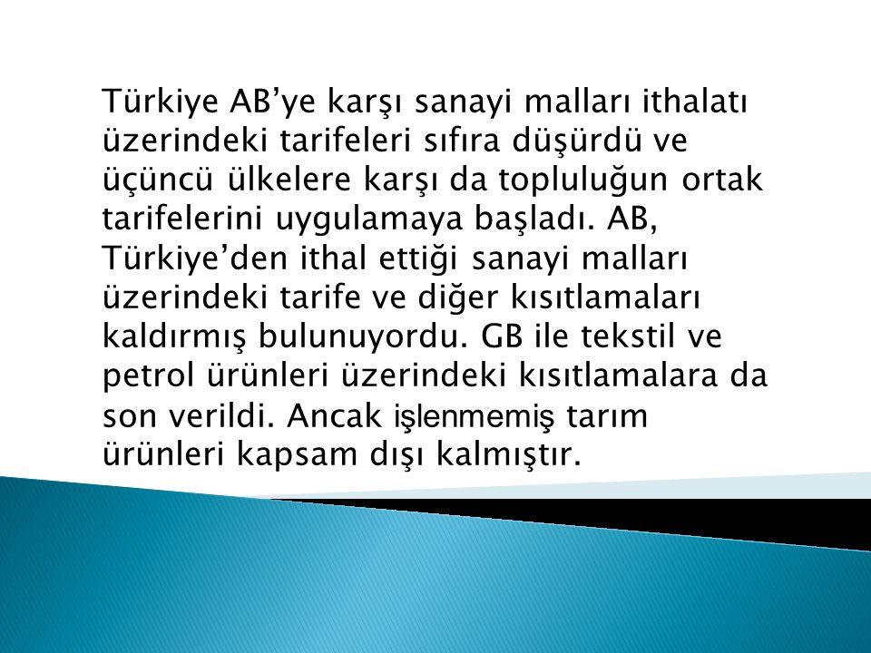 Türkiye AB'ye karşı sanayi malları ithalatı üzerindeki tarifeleri sıfıra düşürdü ve üçüncü ülkelere karşı da topluluğun ortak tarifelerini uygulamaya
