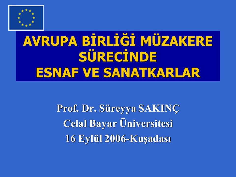 AVRUPA BİRLİĞİ MÜZAKERE SÜRECİNDE ESNAF VE SANATKARLAR Prof.