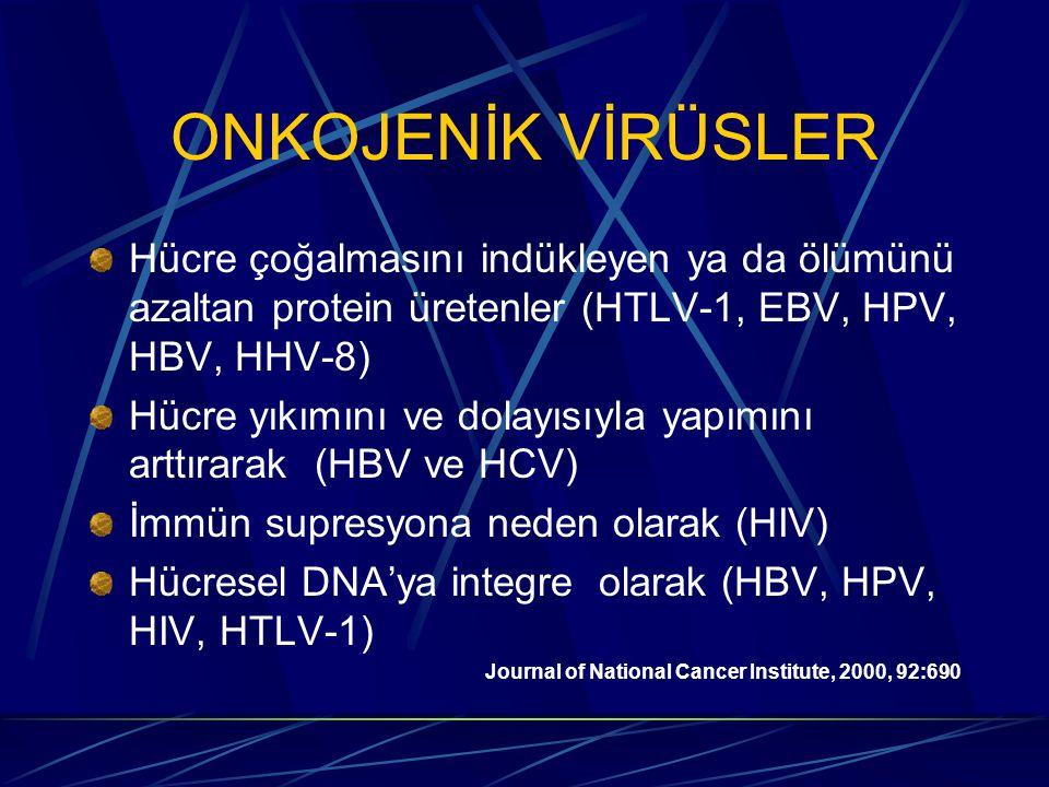 ONKOJENİK VİRÜSLER Hücre çoğalmasını indükleyen ya da ölümünü azaltan protein üretenler (HTLV-1, EBV, HPV, HBV, HHV-8) Hücre yıkımını ve dolayısıyla yapımını arttırarak (HBV ve HCV) İmmün supresyona neden olarak (HIV) Hücresel DNA'ya integre olarak (HBV, HPV, HIV, HTLV-1) Journal of National Cancer Institute, 2000, 92:690