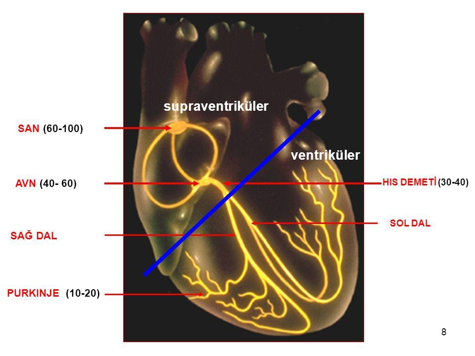 19 Nabızsız Elektriksel Aktivite (NEA)  Kalpte elektriksel aktivite var, nabız oluşturabilecek kadar mekanik aktivite yok.