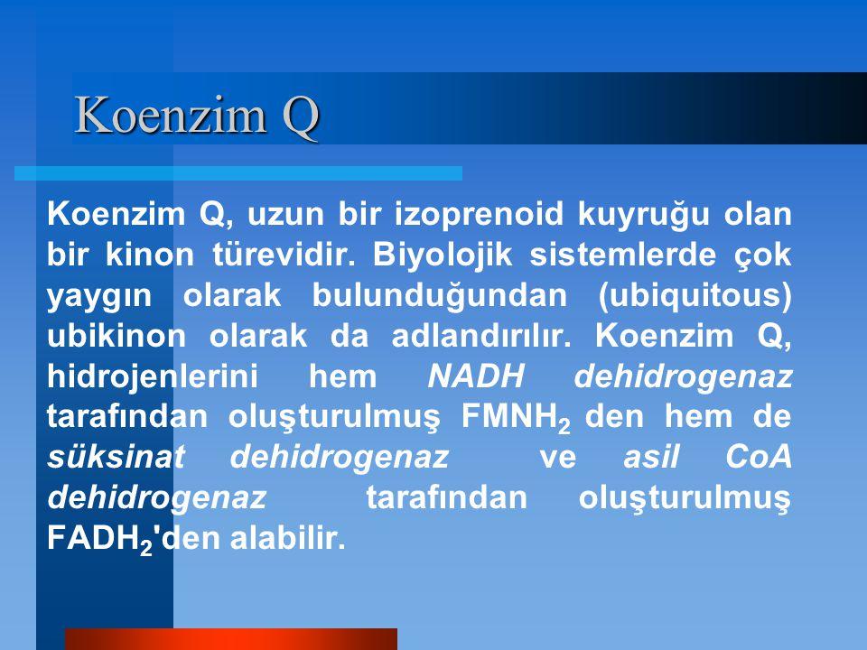 Koenzim Q Koenzim Q, uzun bir izoprenoid kuyruğu olan bir kinon türevidir. Biyolojik sistemlerde çok yaygın olarak bulunduğundan (ubiquitous) ubikinon