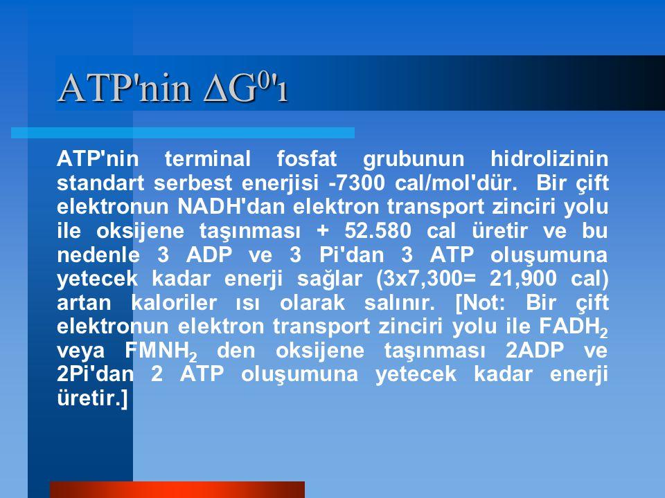 ATP'nin  G 0 'ı ATP'nin terminal fosfat grubunun hidrolizinin standart serbest enerjisi -7300 cal/mol'dür. Bir çift elektronun NADH'dan elektron tran