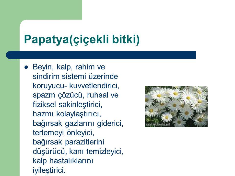 Papatya(çiçekli bitki) Beyin, kalp, rahim ve sindirim sistemi üzerinde koruyucu- kuvvetlendirici, spazm çözücü, ruhsal ve fiziksel sakinleştirici, haz