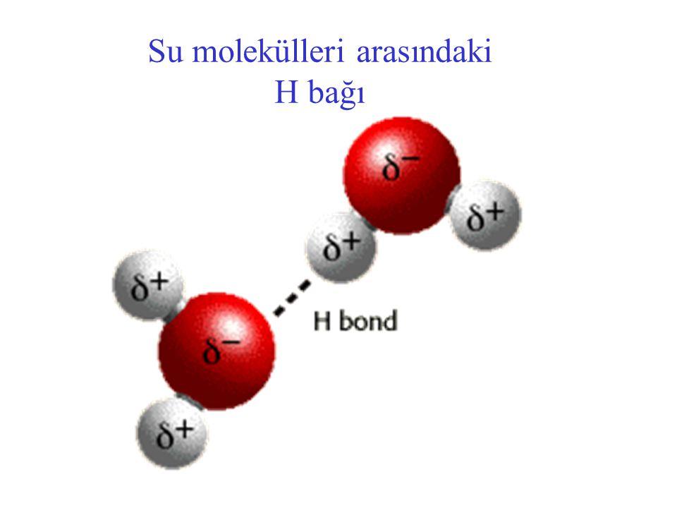 Su molekülleri arasındaki H bağı