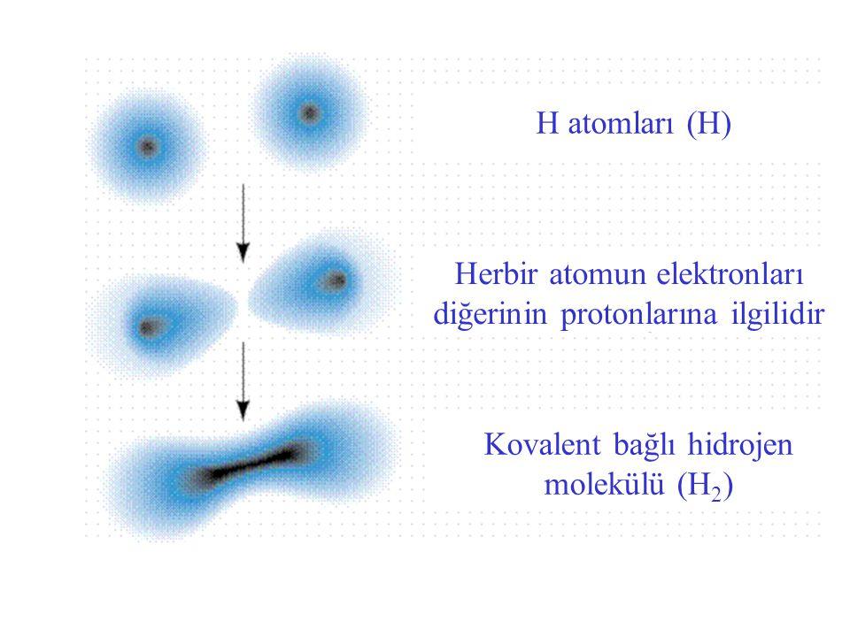 H atomları (H) Herbir atomun elektronları diğerinin protonlarına ilgilidir Kovalent bağlı hidrojen molekülü (H 2 )