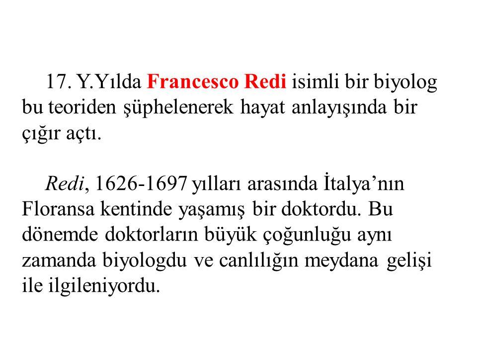 17. Y.Yılda Francesco Redi isimli bir biyolog bu teoriden şüphelenerek hayat anlayışında bir çığır açtı. Redi, 1626-1697 yılları arasında İtalya'nın F