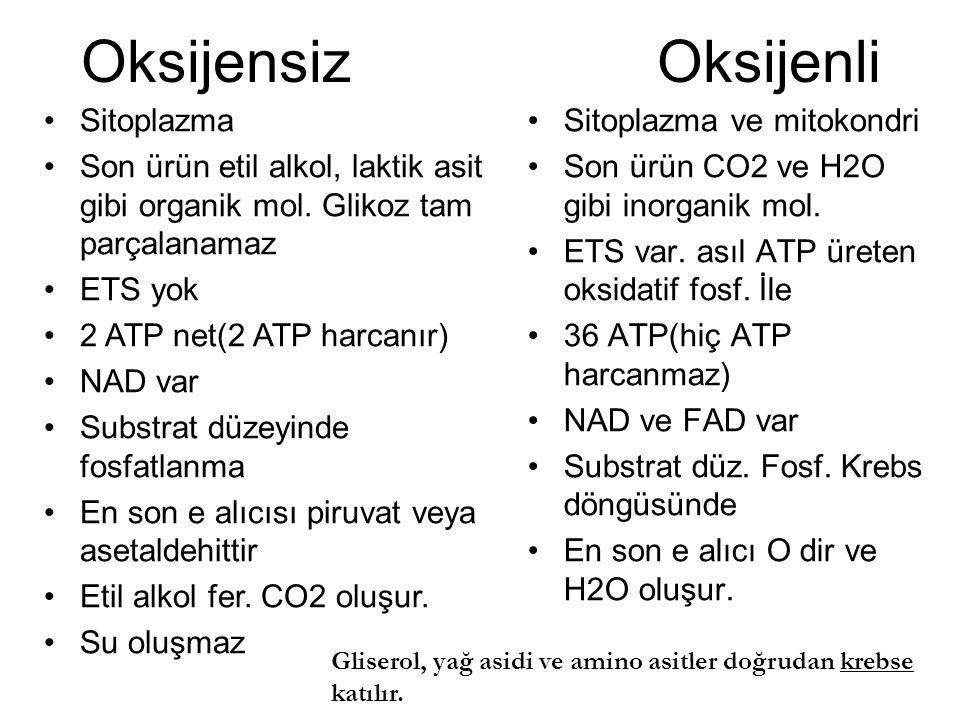 Oksijensiz Oksijenli Sitoplazma ve mitokondri Son ürün CO2 ve H2O gibi inorganik mol. ETS var. asıl ATP üreten oksidatif fosf. İle 36 ATP(hiç ATP harc