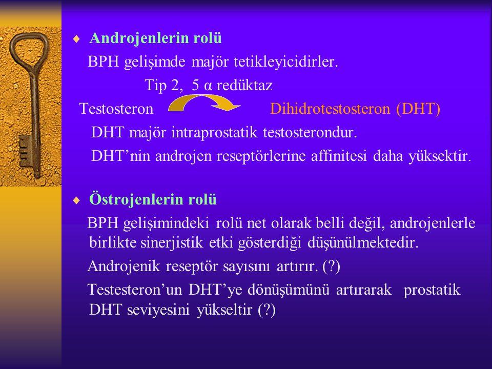  Androjenlerin rolü BPH gelişimde majör tetikleyicidirler. Tip 2, 5 α redüktaz Testosteron Dihidrotestosteron (DHT) DHT majör intraprostatik testoste