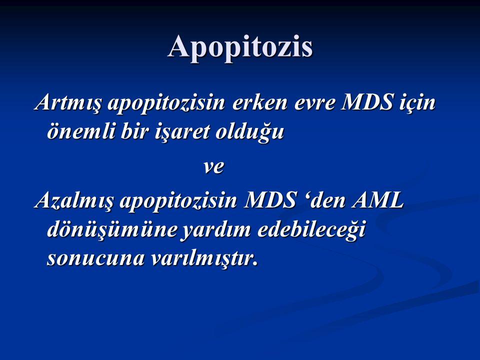 Hematopoezis