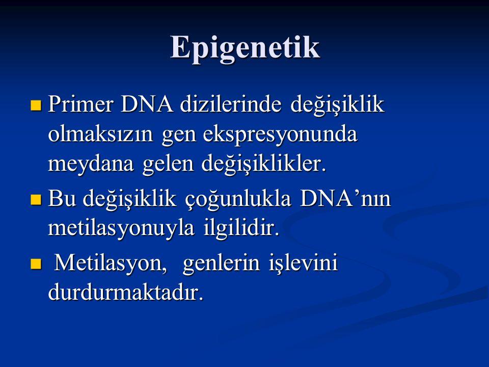 DNA Methyltransferase SAM SAH NH 2 H N NOH Cytosine NH 2 CH 3 N NOH 5-Methyl- Cytosine DNMT SAM = S-Adenosyl Methionine SAH = S-Adenosyl Homocysteine