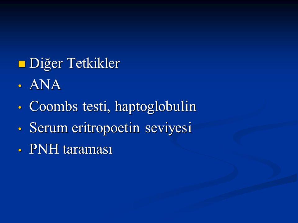 Eritrosit Hücreler Periferik Yayma Periferik Yayma-Makrositoz -Gözyaşı hücreleri -Eliptosit-Akantosit