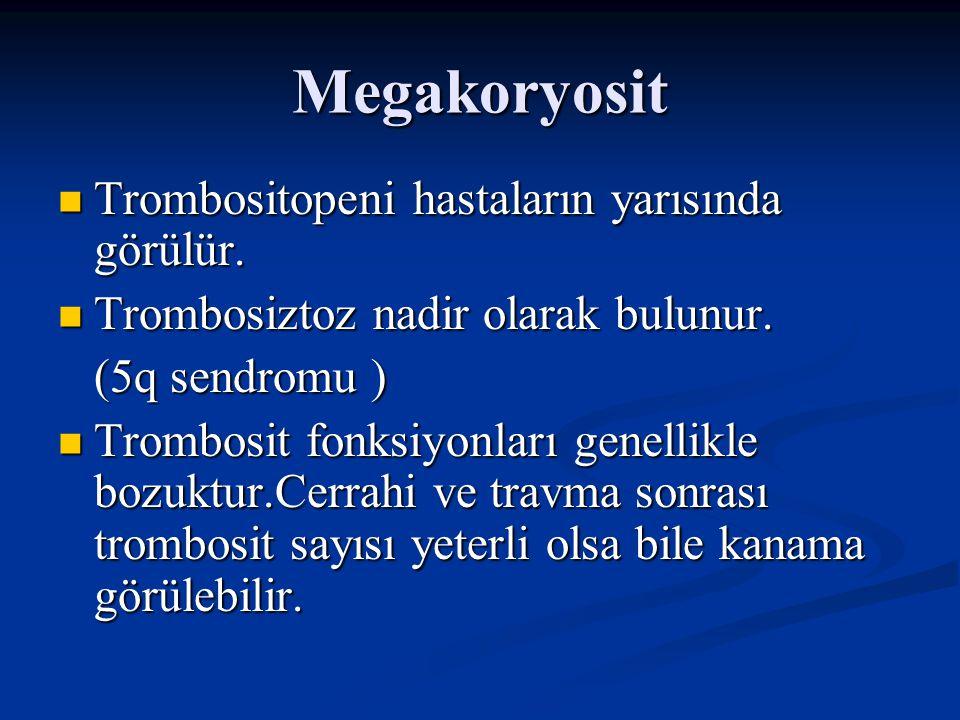 Megakoryosit Periferik Yaymada Periferik Yaymada Büyük ve granülsüz trombositler Büyük ve granülsüz trombositler Kemik İliğinde Kemik İliğinde Mikromegakaryositler ve nükleer lob sayısı azalmış megakaryositler Mikromegakaryositler ve nükleer lob sayısı azalmış megakaryositler Birden fazla nükleusu olan (osteoklast- like) Birden fazla nükleusu olan (osteoklast- like)