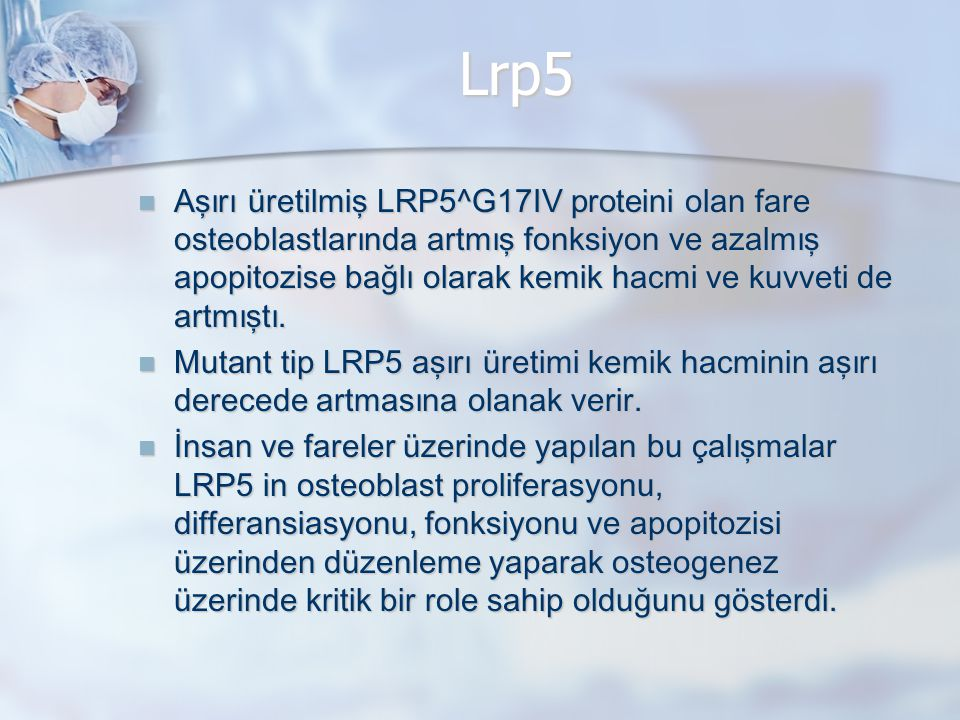 Lrp5 Aşırı üretilmiş LRP5^G17IV proteini olan fare osteoblastlarında artmış fonksiyon ve azalmış apopitozise bağlı olarak kemik hacmi ve kuvveti de artmıştı.