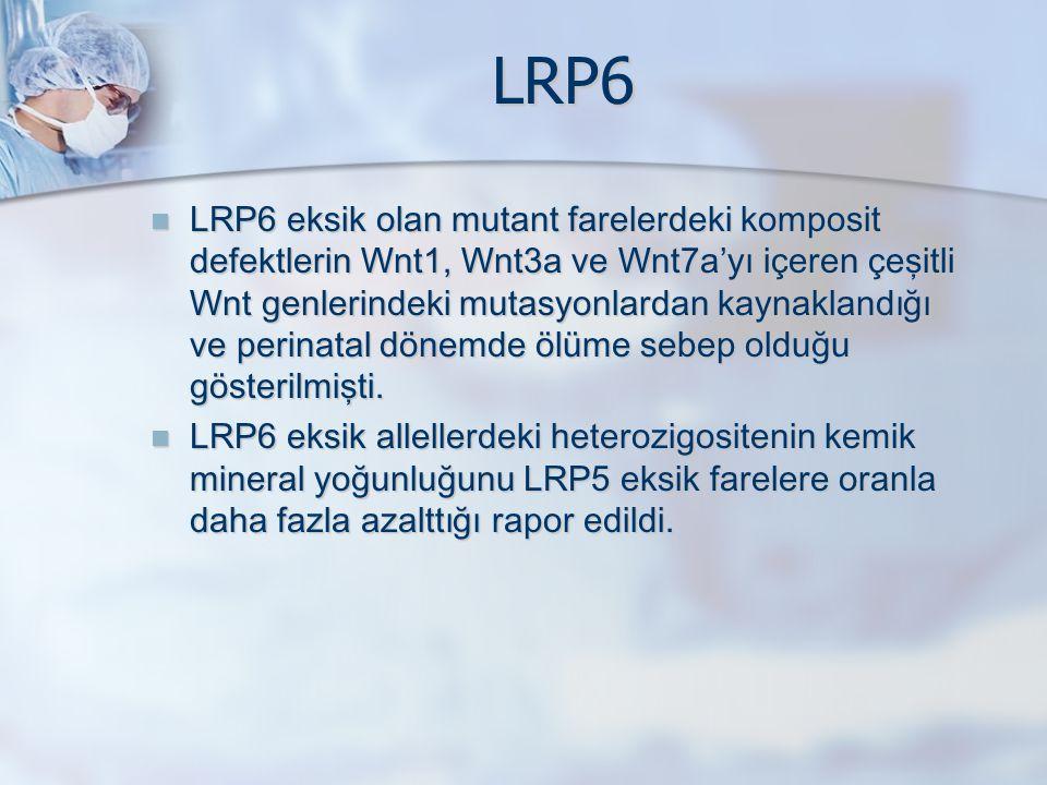 LRP6 LRP6 eksik olan mutant farelerdeki komposit defektlerin Wnt1, Wnt3a ve Wnt7a'yı içeren çeşitli Wnt genlerinde k i mutasyonlardan kaynaklandığı ve perinatal dönemde ölüme sebep olduğu gösterilmişti.