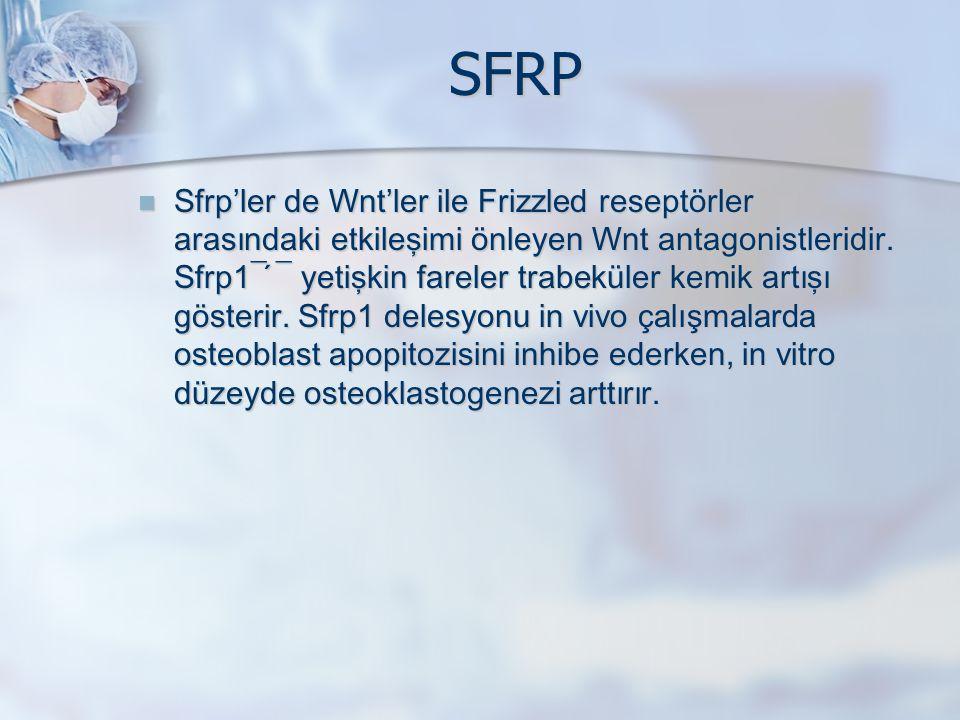 SFRP Sfrp'ler de Wnt'ler ile Frizzled reseptörler arasındaki etkileşimi önleyen Wnt antagonistleridir. Sfrp1¯ ́¯ yetişkin fareler trabeküler kemik art