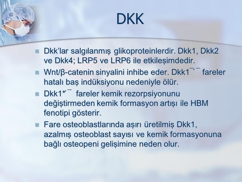 DKK Dkk'l a r salgılanmış glikoproteinlerdir. Dkk1, Dkk2 ve Dkk4; LRP5 ve LRP6 ile etkileşimdedir. Dkk'l a r salgılanmış glikoproteinlerdir. Dkk1, Dkk