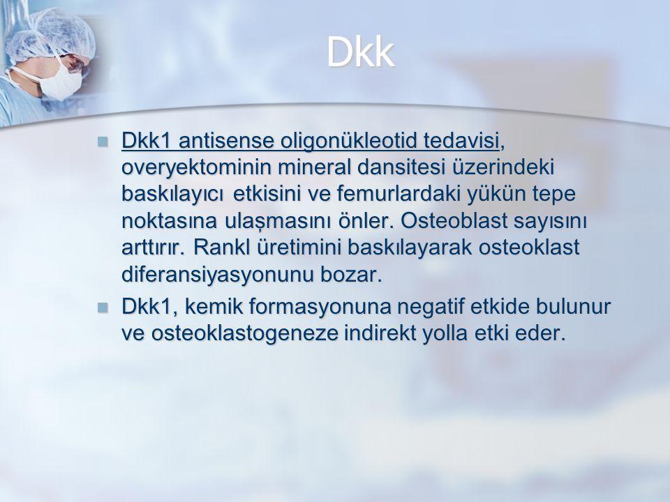 Dkk Dkk1 antisense oligonükleotid tedavisi, over y ektominin mineral dansitesi üzerindeki baskılayıcı etkisini ve femurlardaki yükün tepe noktasına ulaşmasını önler.