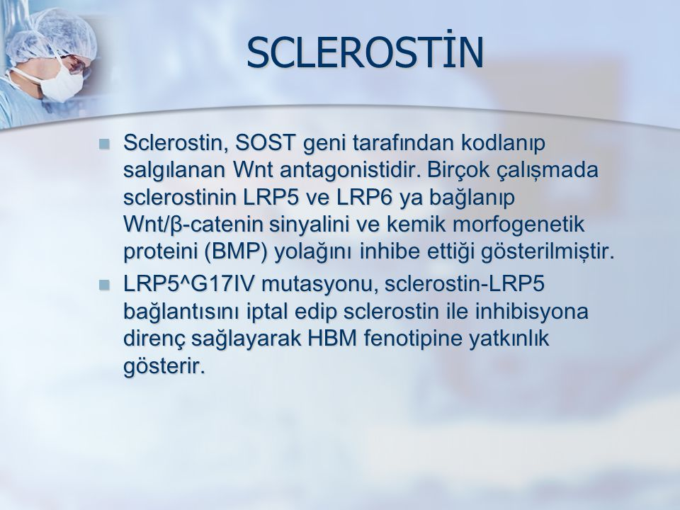 SCLEROSTİN Sclerostin, SOST geni tarafından kodlanıp salgılanan Wnt antagonistidir. Birçok çalışmada sclerostinin LRP5 ve LRP6 ya bağlanıp Wnt/β-caten