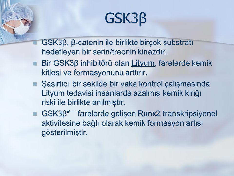GSK3β GSK3β, β - catenin ile birlikte birçok substratı hedefleyen bir serin/treonin kinazdır. GSK3β, β - catenin ile birlikte birçok substratı hedefle