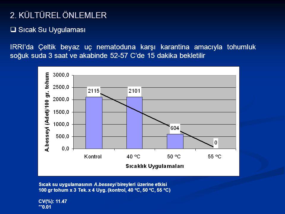 Sıcak su uygulamasının A.besseyi bireyleri üzerine etkisi 100 gr tohum x 3 Tek. x 4 Uyg. (kontrol, 40 ºC, 50 ºC, 55 ºC) CV(%): 11.47 **0.01  Sıcak Su