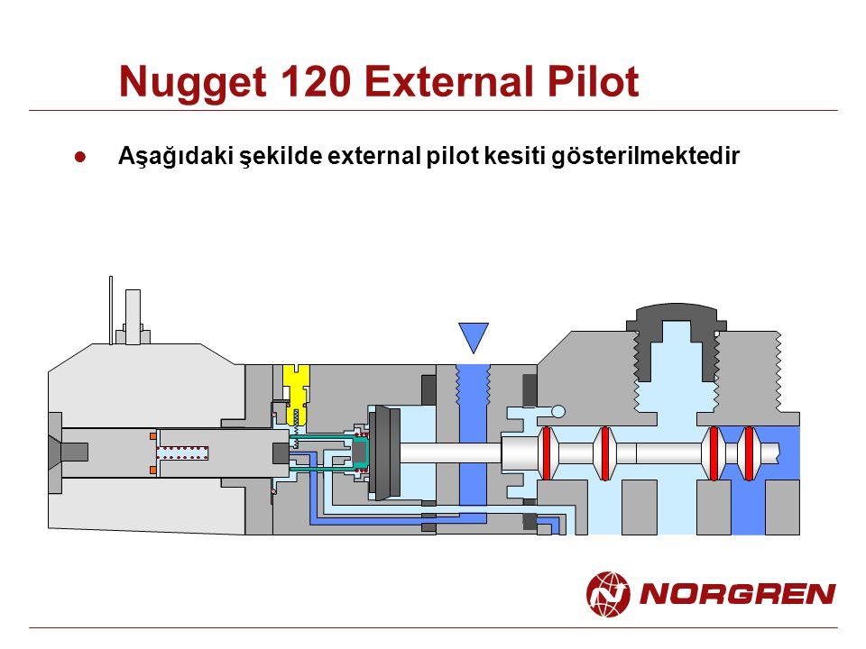 Nugget 120 External Pilot Aşağıdaki şekilde external pilot kesiti gösterilmektedir