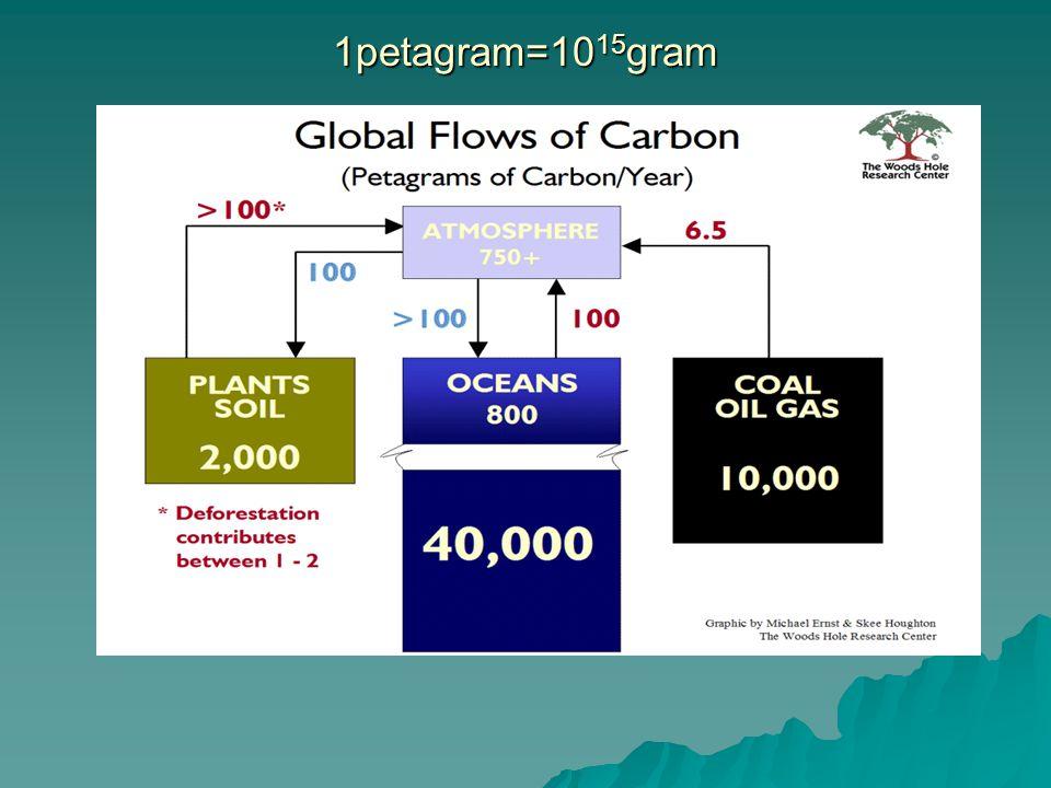  Atmosferdeki CO 2 oranı 1750'den bu yana %31 artmış olup, halen de artmaya devam etmektedir.