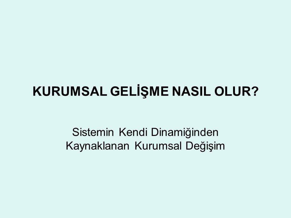 KUŞKUCU GÖRÜŞ Türkiye'nin AB üyesi olma olasılığı sıfıra çok yakındır AB üyeliğinin Türkiye'ye sağlayacağı ek kazanç fazla değildir Türkiyede toplumsal iskonto oranı çok yüksektir AB ile müzakereler çerçevesinde yapılacak reformlar ancak AB üyeliği bağlamında yaralıdır.