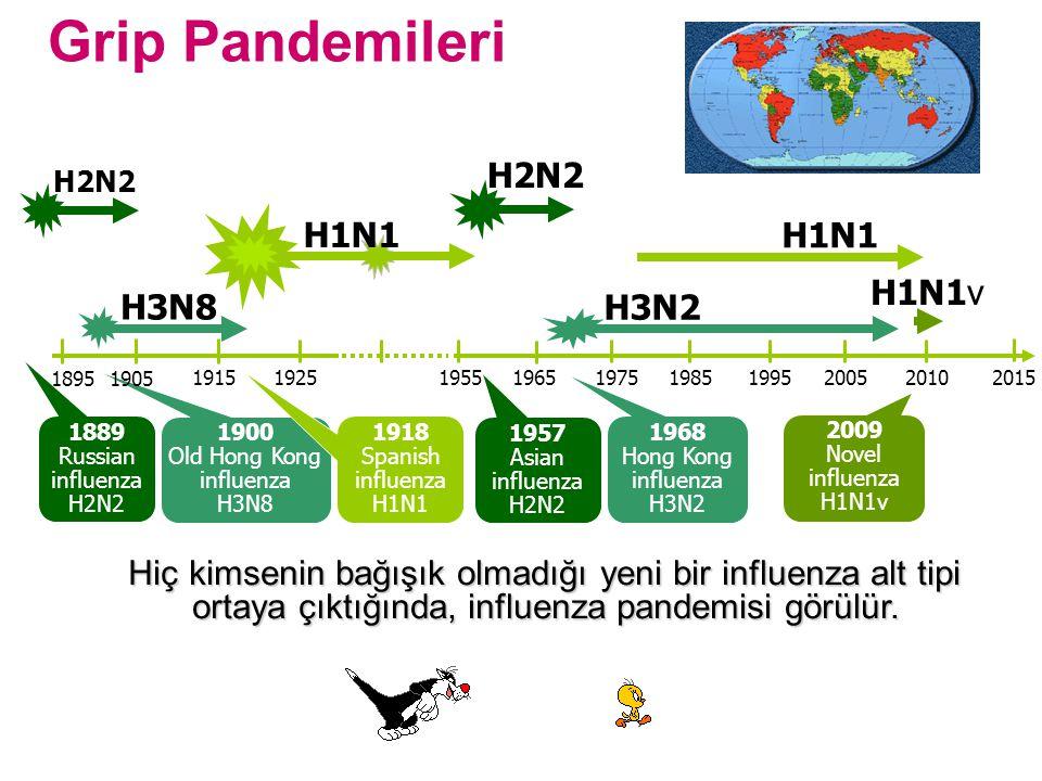 Grip Pandemileri H1N1 H2N2 1889 Russian influenza H2N2 1957 Asian influenza H2N2 H3N2 1968 Hong Kong influenza H3N2 H3N8 1900 Old Hong Kong influenza