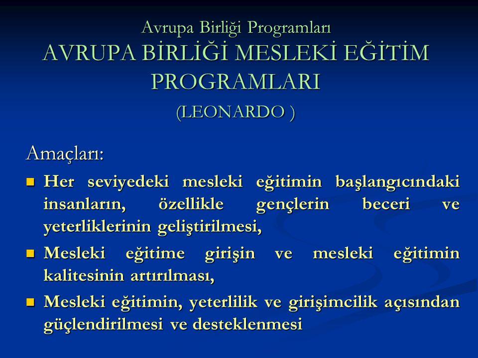 Avrupa Birliği Programları AVRUPA BİRLİĞİ MESLEKİ EĞİTİM PROGRAMLARI (LEONARDO ) Amaçları: Her seviyedeki mesleki eğitimin başlangıcındaki insanların,
